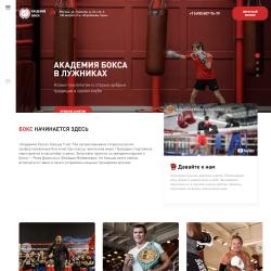 Академия бокса в Лужниках